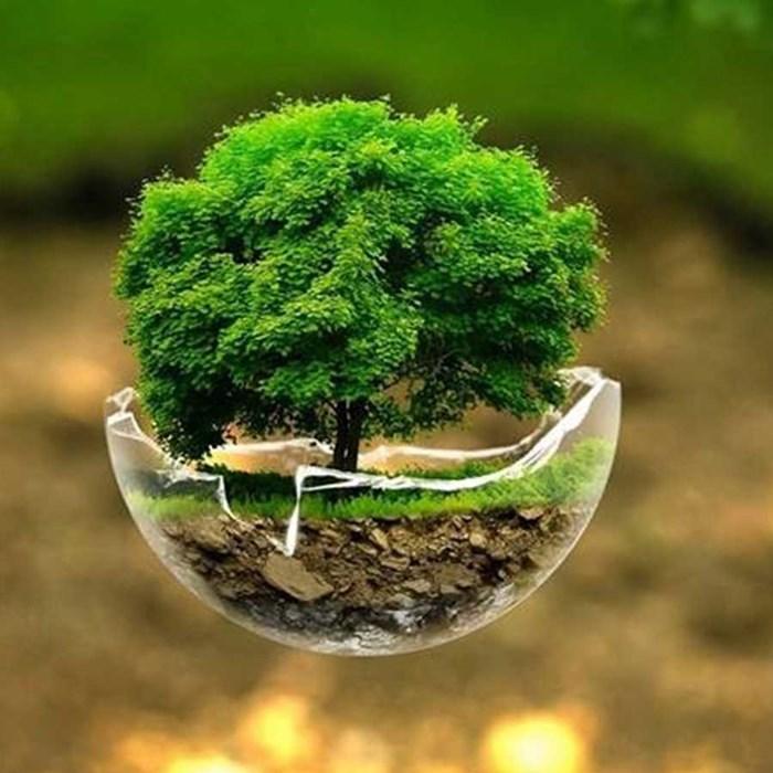Sustentabilidade na Construção é uma tendência no Brasil